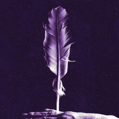 feather // © Judith Klapper